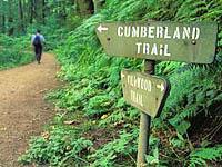 https://www.portlandmuralinitiative.org/wp-content/uploads/2020/04/hiking-1.jpg